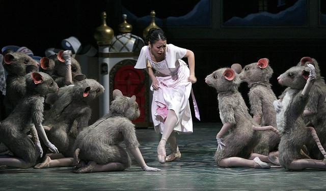 海外バレエ団オーディション2016:カナダ、アルバータバレエ団